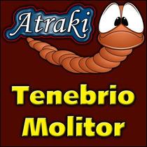100 Larvas Vivas Tenebrio Molitor Frete Grátis
