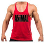 Kit Com 5 Camiseta Regata Super Cavada Animal Pak Musculação