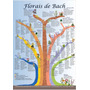 Poster A3 Florais De Bach Árvore Dos 7 Grupos - Frete Grátis