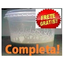 Micro Vermes - Cultura Completa! Alevinos Betta Frete Grátis