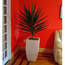 1 Vaso Planta Trapesio Quadrado Conico Texturizado 75x40 Cm
