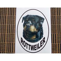 Adesivos De Rottweiller Para Vidros E Latarias