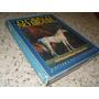 O Cavalo No Brasil As Principais Racas Criadas No Pais