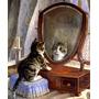 Gato Olhando No Espelho Penteadeira Pintor Paton Tela Repro