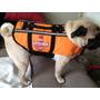 Colete Jaqueta Salva Vidas Cachorro Caes Pet