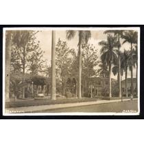 Cartão Postal Antigo Batatais Sp Jardim