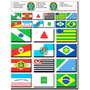 Cartela 24 Bandeiras Estados Região Sul Sudeste Centro Oeste