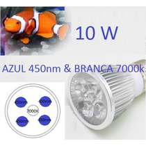Lampada Led P/ Aquarios - Luz Do Dia + Moom Blue 10w