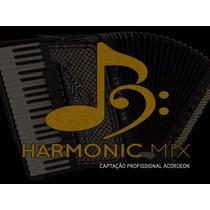 Captação Eletrificação Sanfona Profissional Hmx 16 Black
