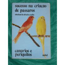 Criaçao De Periquitos Frete Gratis P/ Todo O Brasil