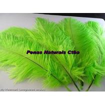 Plumas Avestruz Verde Limao Chorona De 35 A 40 Cm