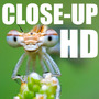 Hd Kit Macro Close-up Fullhd 52mm 55mm 58mm (4 Lentes) Hd2