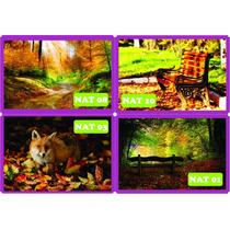Adesivo Decorativo Outono Paisagem Floresta Rio - Grande 3m²