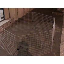 Cerca Cães , Gatos Com Pintura Epóxi Anti Ferrugem