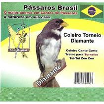 Cd O Canto Coleiro. Cd Original. Frete Grátis