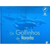 Os Golfihos De Fernando De Noronha