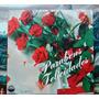 Coral Felicidade - Parabéns, Felicidades Compacto Vinil 1972