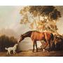 Cavalo Cachorro Amigos No Campo Pintor Stubbs Na Tela Repro