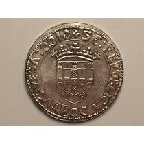 Portugal) 5 Euros - 2010 ( Florebit ) Sem Serrilha / Flor