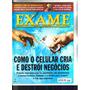 Revista Exame 2005 - Maior Usineiro, Como Celular Destrói...