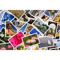 Revelação Foto Digital 100 Fotos Papel Fotográfico