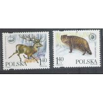 Polônia 1999 Fauna, Felino E Veado. Série Nova.