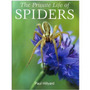 Livro The Private Life Of Spiders - Aranhas - Aracnídeos