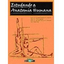 Estudando A Anatomia Humana