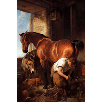 Poster Cartaz Ferradura Em Cavalo Burro Cachorro Ferreiro