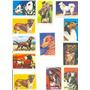 Lote Com 12 Figurinhas De Cães De Diversas Raças