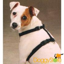 Coleira Peitoral Zack & Zoey Cães - Grande - Várias Cores!!