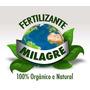 400 Litros Fertilizante Orgânico Milagre Hormônios Vitaminas
