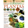 O Poder Curativo Das Plantas Nº04