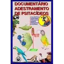 Fantástico Documentário De Adestramento De Calopsitas Etc.