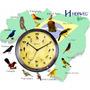 6658 Relógio De Parede Canto De Pássaros Brasileiros Herweg