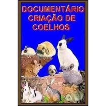 Fantástico Documentário De Criação De Coelhos + Brindes!!!