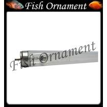 Lampada Osram 55 Watts Tubular T8 Uv Germicida Fish Ornament