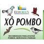 Xô Pombo Gel Repelente Para Pombos, Morcegos E Pássaros