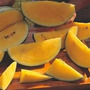 Sementes Da Melancia Preta Polpa Amarela-