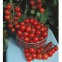 60 Sementes De Tomate Cereja Frete Grátis
