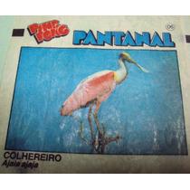 Figurinhas Ping-pong - Pantanal - C2