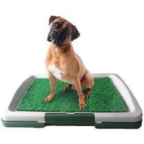 Sanitário Canino P/ Cães Tapete Grama Artificial Higiênico