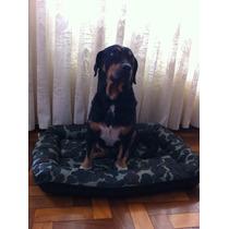 Colchão Bote Camuflado Exército - Dupla Face - Para Cachorro