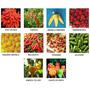 Coleção De Sementes De Pimenta + Goji