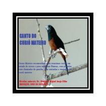 Canto Do Curió Mateiro - Cd Frete Grátis Para O Brasil