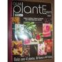 Guia Plante Bem Ano 2 N°5 - 42 Plantas, 38 Flores 44 Frutas
