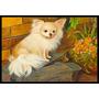 Chihuahua Apenas Se Aquecendo Indoor Ou Outdoor Mat 24x36 Mh