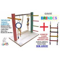 Kit Básico Calopsita Feliz Playground Colorido + Brinquedo
