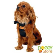 Kit C/ 6x Cinto De Segurança P/ Cachorros De Todos Portes!