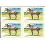 Quadra Cavalos De Raças Brasileiras - Marajoara 1985
